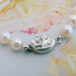 akoya-pearl